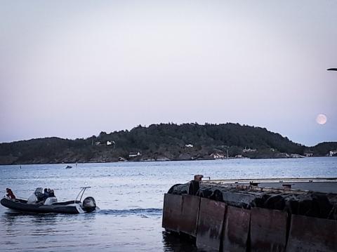 Kragero harbour